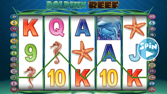 Dolphin Reef 10